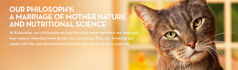 Eukanuba Veterinary Diets Philosophy