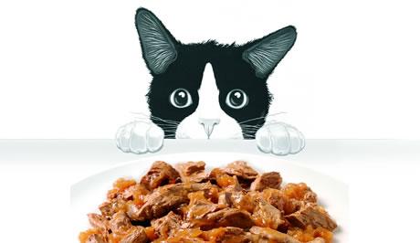 Felix Cat Food Images