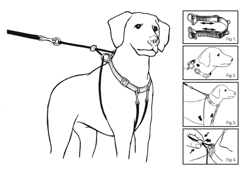 sure pet dog harness instructions