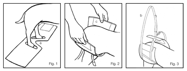 Helping Hand Support System Instructions