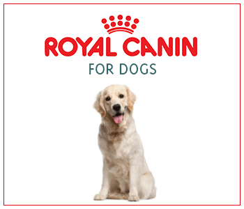 Royal Canin for Dogs