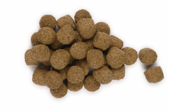 Dry Dog Food To Wet Conversion