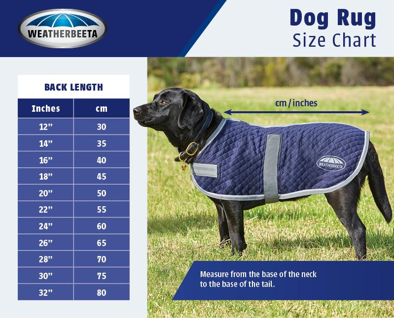 /images/embedded/1570522936_2005dog-coat-sizeguide.jpg